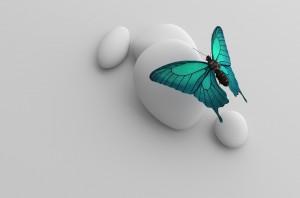 Trkiser Schmetterling sitzend auf Stein